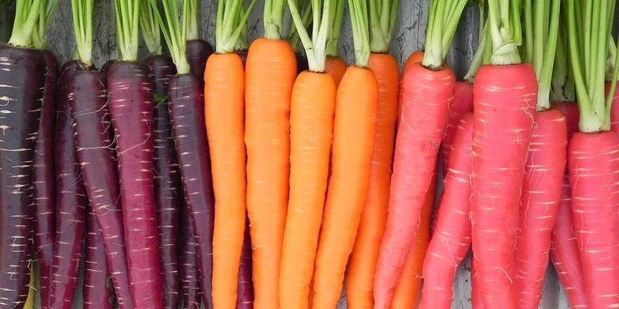 dieta-vegana-ecco-come-renderla-equilibrata-1